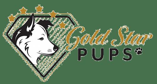 Gold Star Pups Logo